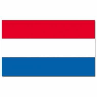 Nederland vlaggen